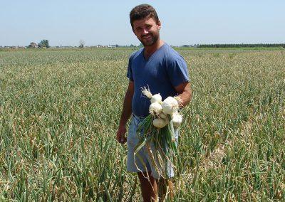 Daržovių sėklų sėjamąja SPX 86 pasėti svogūnai - patenkintas klientas