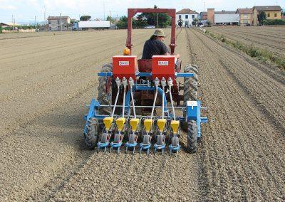 Daržovių sėklų sėjamoji SPX 86 sėjimas lauke