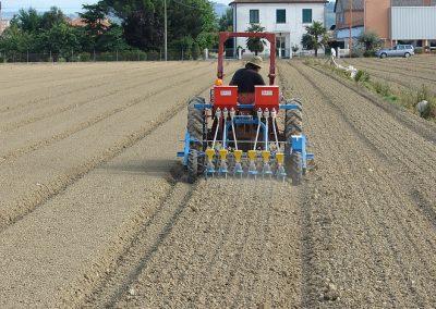 Daržovių sėklų sėjamoji SPX 86 sėjimas didelių plotų