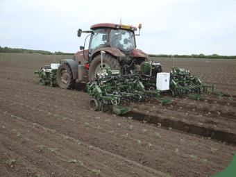 Robocrop InRow ravėtuvas kauptuvas ravi 9 vagas salotų