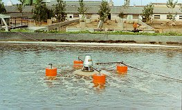 Srutu aeratorius Daermix lagunoje