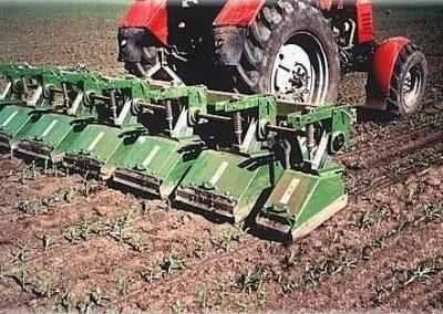 Tarpvagiu freza kultivatorius kukuruzuose