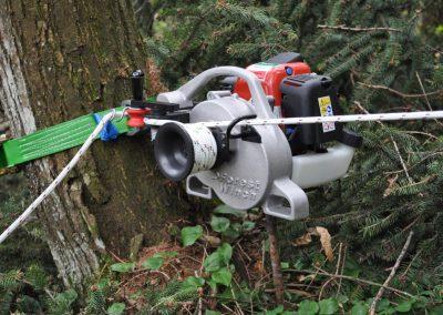 Tempimo kėlimo gervė VF80 BOLT prikabinta prie medžio
