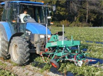 Braškių ūsų pjoviklis auginamų ant vagų kabinamas ant traktoriaus priekio