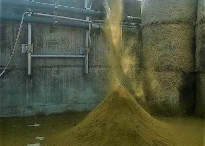 zaliojo kraiko gamyba